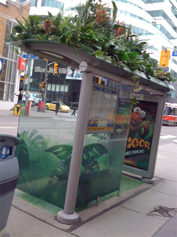 IgorJungle Bus Shelter