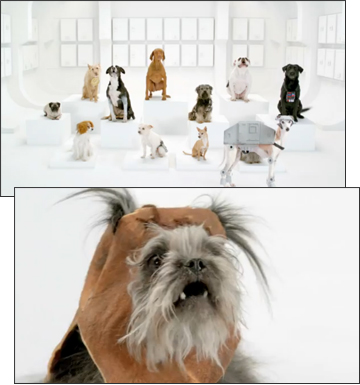 Volkswagen Star Wars Dog Chorus