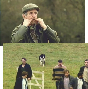 The Guinness Saint Patrick's Day Sheepdog Trials