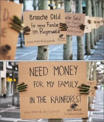 Oro Verde Rainforest Tree Protest