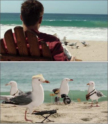 Cape Cod Potato Chips - A Flock of Seagulls