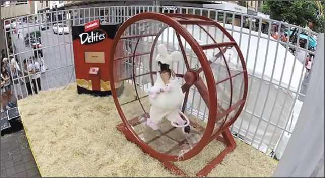 Fantastic Delights Hamster Wheel