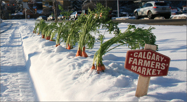 Calgary Farmer's Market - Open all Winter