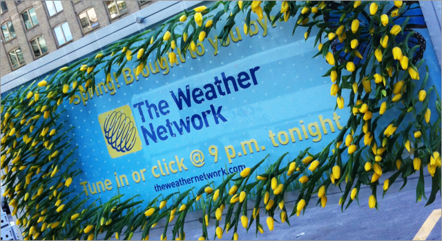 The Weather Network - Living Billboard Spring Update