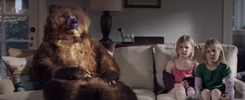 Tempur-pedic Bear